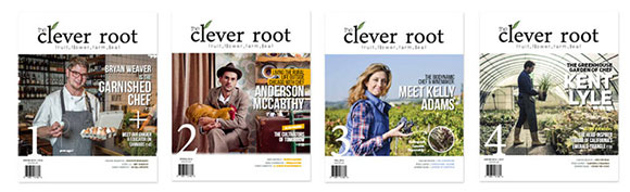 cleverroot-580