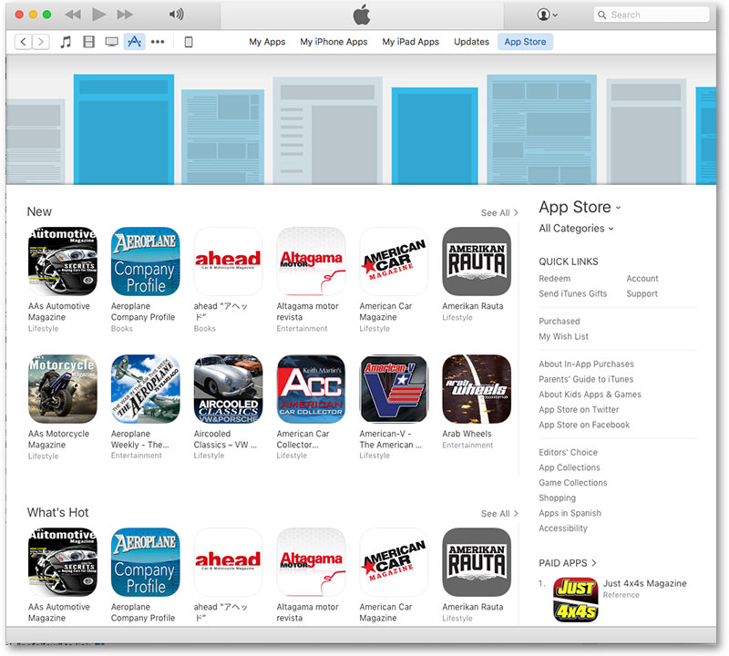 Apple App Store category